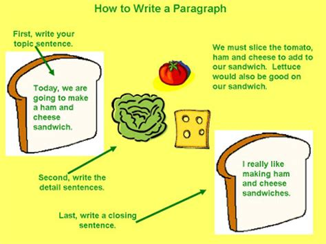 Can essay have 2 paragraph body